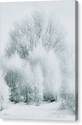 Magical Snow Palace Canvas Print by Georgiana Romanovna
