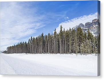 Magnetic North Canvas Print