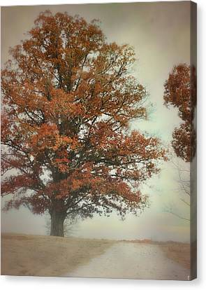 Magnificence - Foggy Autumn Scene Canvas Print by Jai Johnson