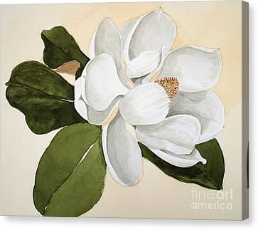 Canvas Print featuring the painting Magnolia Bloom by Nancy Kane Chapman