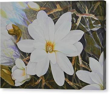 Magnolia Blossom Canvas Print by Adel Nemeth