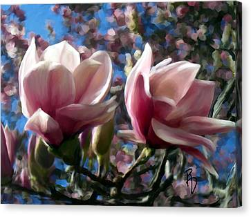 Magnolia Blossoms Canvas Print by Ric Darrell