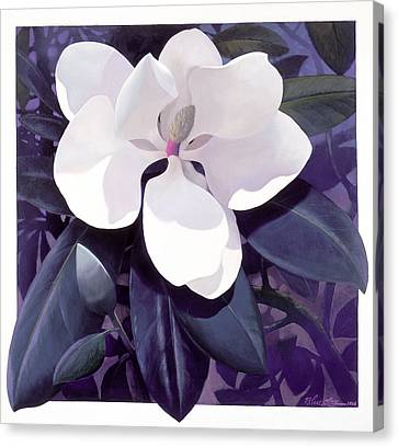 Magnolia Canvas Print by Blue Sky