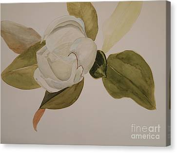 Canvas Print featuring the painting Magnolia California by Nancy Kane Chapman