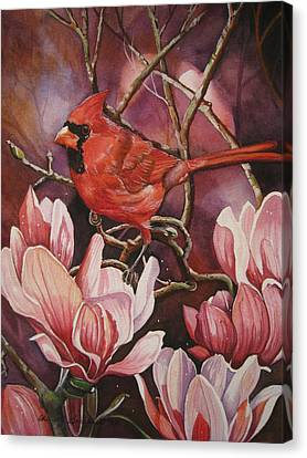 Magnolia Cardinal Canvas Print by Cheryl Borchert