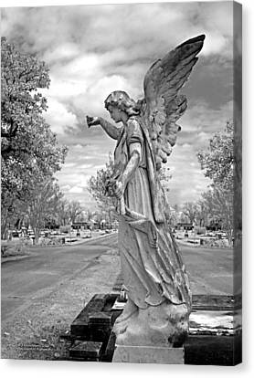 Angel Canvas Print - Magnolia Cemetery In Mobile Alabama by Terry Reynoldson