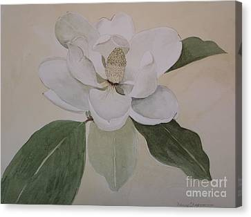 Canvas Print featuring the painting Magnolia Delight by Nancy Kane Chapman