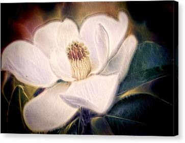 Canvas Print featuring the photograph Magnolia Dream by Joetta West