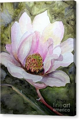Magnolia In Bloom Canvas Print by Carol Grimes