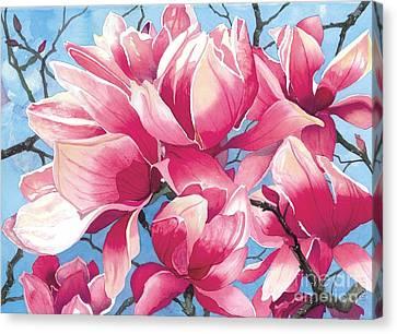 Magnolia Medley Canvas Print