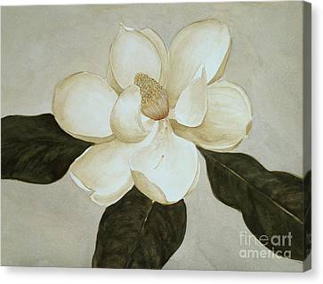 Canvas Print featuring the painting Magnolia Wave by Nancy Kane Chapman