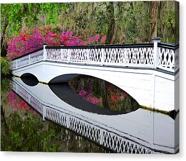 Magnolia White Bridge Canvas Print