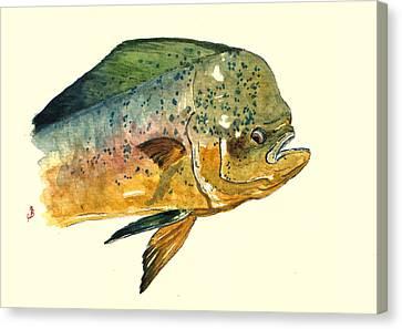 Mahi Mahi Fish Canvas Print