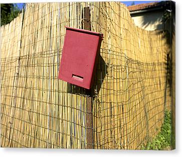 Mail Box On Bamboo Fence Canvas Print by Daniel Blatt