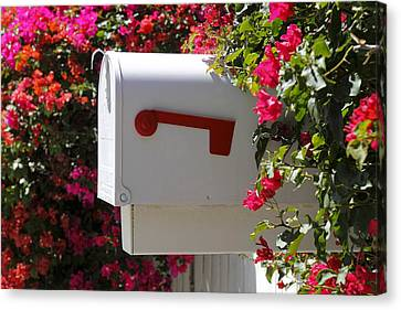 Mailbox Canvas Print by Rudy Umans