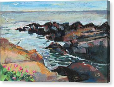 Maine Coast Rocks And Birds Canvas Print