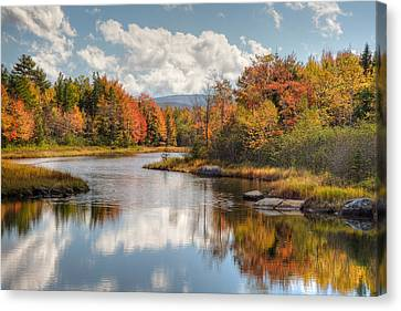 Maine Fall Foliage Photograph - Acadia Bar Harbor Area Canvas Print by Bill Swindaman