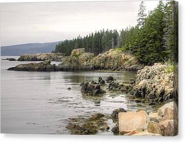 Maine's Beautiful Rocky Shore Canvas Print