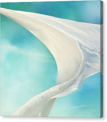 Mainsail 4 Canvas Print by Laura Fasulo