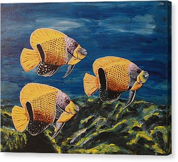 Majestic Angelfish Canvas Print by Wayne Cantrell