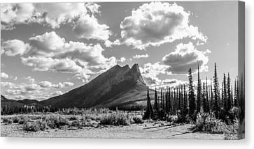 Majestic Drive Canvas Print