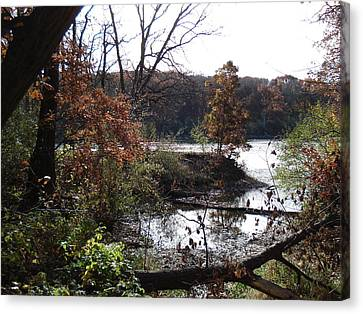 Canvas Print featuring the photograph Majestic Fall by J L Zarek