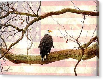 Canvas Print featuring the photograph Majestic II by Trina  Ansel