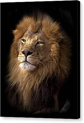 Majestic In Color Canvas Print