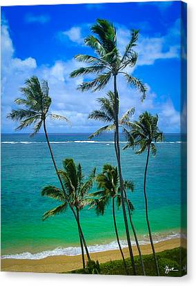 Majestic Palm Trees Canvas Print