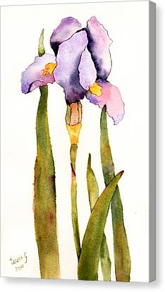 Majestic Purple Iris Canvas Print by Teresa Tilley