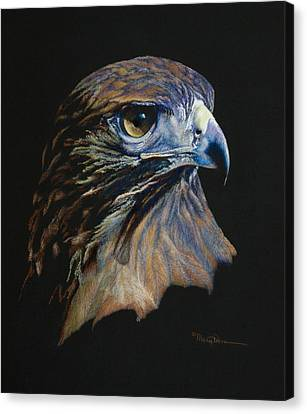 Majestic Raptor Red-tail Hawk Canvas Print