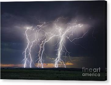 Majestic Canvas Print