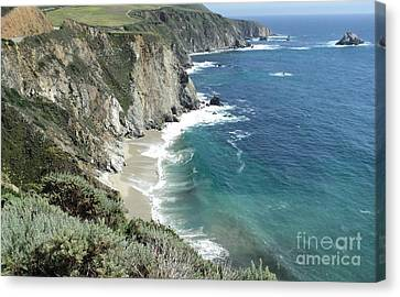 Canvas Print featuring the photograph Majestic Sea by Carla Carson
