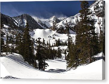Canvas Print featuring the photograph Majestic by Steven Reed