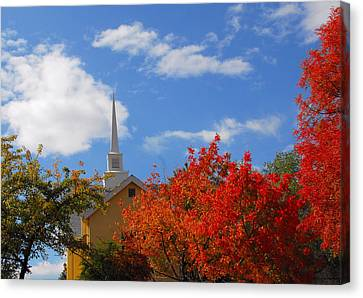 Canvas Print featuring the photograph Majesty by Lynn Bauer