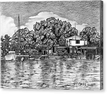 Majuro Harbor Canvas Print by Lew Davis