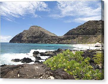 Makapuu Beach Canvas Print by Brandon Tabiolo