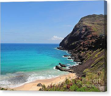 Canvas Print featuring the photograph Makapu'u Beach  by Kristine Merc