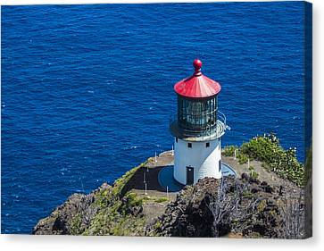 Makapuu Lighthouse 3 Canvas Print by Leigh Anne Meeks