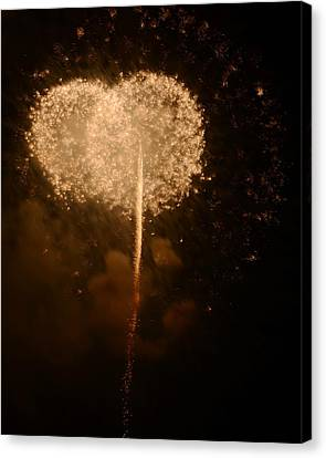 Canvas Print featuring the photograph Make A Wish by Linda Mishler