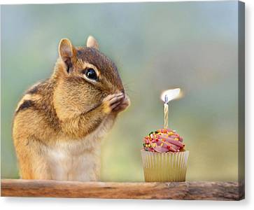 Squirrel Canvas Print - Make A Wish by Lori Deiter