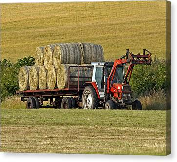 Make Hay When Sun Shines Canvas Print by Paul Scoullar