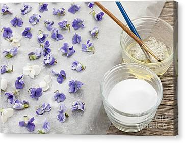 Making Canvas Print - Making Candied Violets by Elena Elisseeva