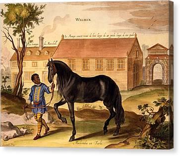Makomilia, A Turk, Led By A Negro Canvas Print by Abraham Jansz. van Diepenbeke