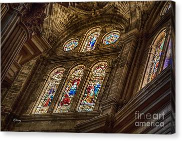 Malaga Cathedral II Canvas Print by Rene Triay Photography
