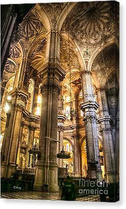 Malaga Cathedral V Canvas Print by Rene Triay Photography