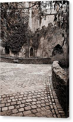 Malahide Castle Grounds Canvas Print