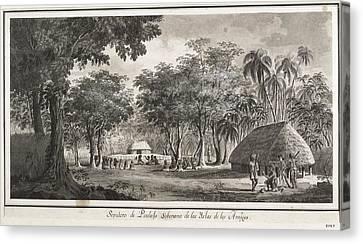 Malaspina Expedition. Tonga Islands Canvas Print by Everett