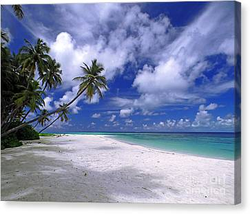 Maldives 03 Canvas Print by Giorgio Darrigo