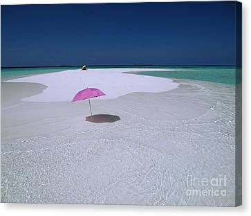 Maldives 04 Canvas Print by Giorgio Darrigo